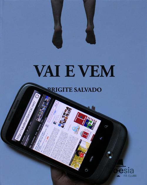 """""""Vai e Vem"""" de Brigite Salvado"""